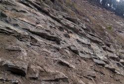 Cava - Pietra di Langa